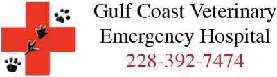 Gulf Coast Veterinary Emergency Hospital
