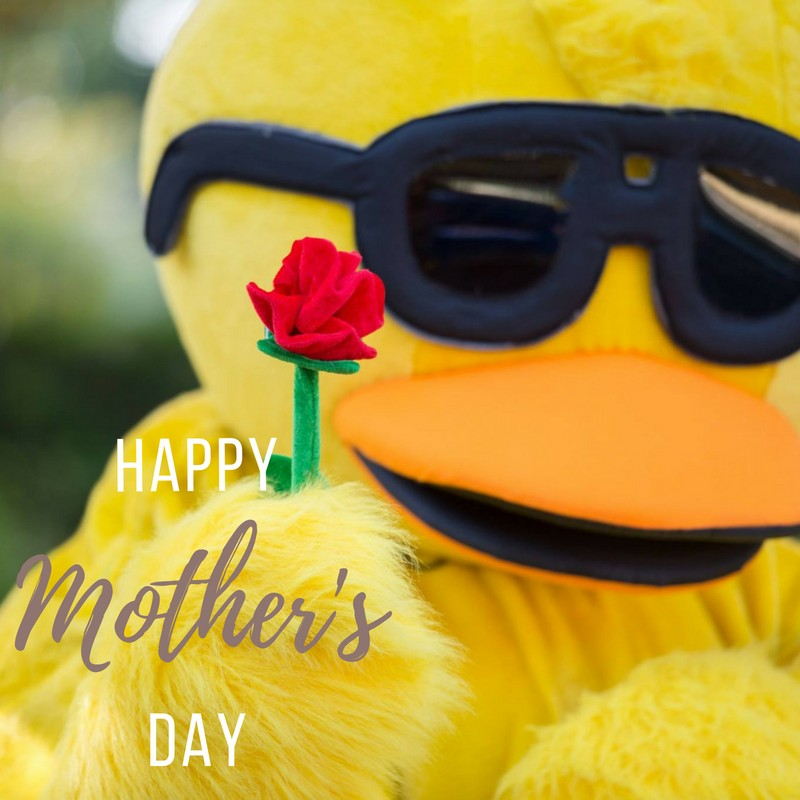 Make Mom feel Ducky